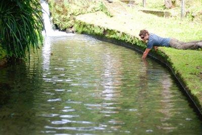 cr-troutfishing